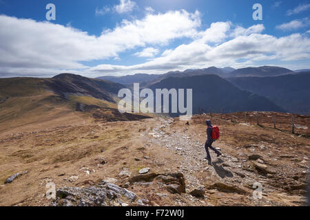 A hiker walking down Little Edge towards Hindscarth with Honister Pass in the distance, English Lake District, UK. - Stock Image