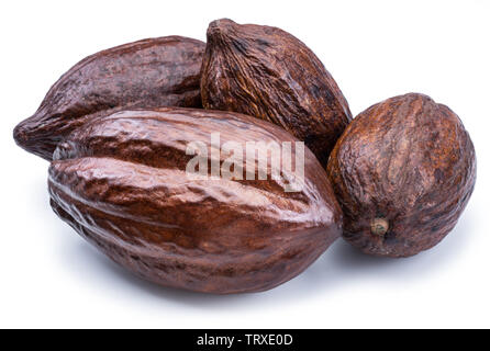 Brown cocoa pods isolated on a white background. - Stock Image