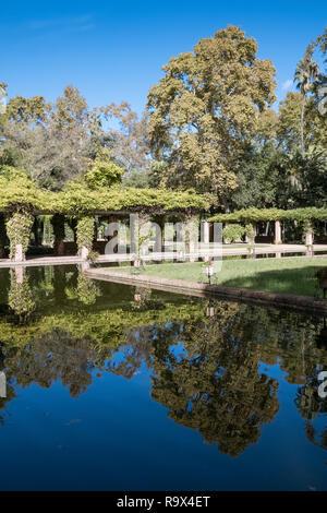 Gardens inside Maria Luisa Park (Parque de María Luisa), Seville, Andalucia, Spain. - Stock Image