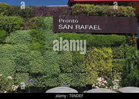 'green wall' on roadside service station  central Chile                January - Stock Image