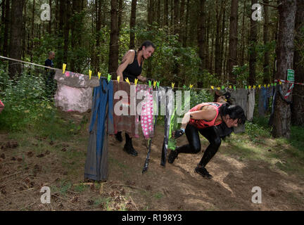 Obstacle course runners ducking under a very minor obstacle - Stock Image