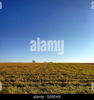 English countryside, blue sky and field. - Stock Image