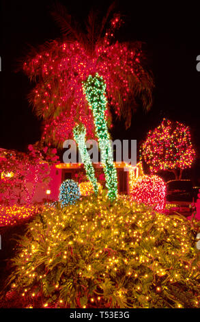 Florida Pinecrest winter holiday lights palm trees private home display - Stock Image