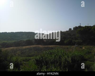 Scenic View Of Agricultural Field Against Clear Sky - Stock Image