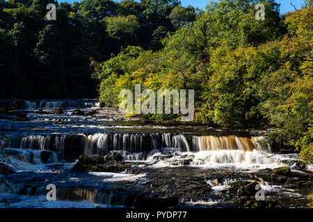 Autumnal sunlight on the River Ure at Upper Force, Aysgarth, Wensleydale, UK - Stock Image