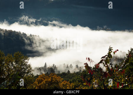 Early morning mist swirls in the Appalachian Mountains - Stock Image