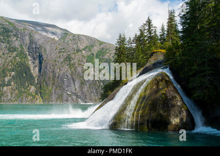 Tracy Arm, Tongass National Forest, Alaska. - Stock Image
