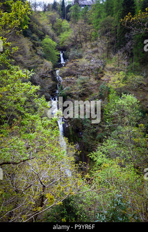 Devil's Bridge Falls – Rhaeadrau Pontarfybach - Ceredigion, Wales, UK - Stock Image