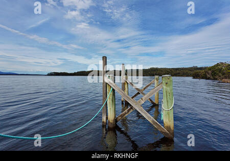 Connection visible in worn beauty of  wood pilings with connecting, fresh blue rope at Sarah Island near Strahan in Tasmania in Australia. - Stock Image