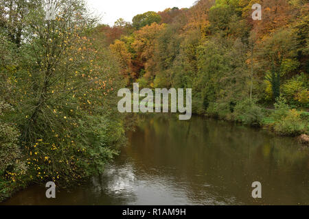 Autumn Colours on the River Teme - Stock Image