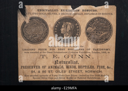 Trade label of Thomas Gunn of Norwich, England containing taxidermy item - Stock Image