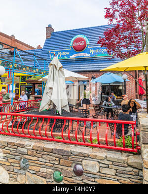 ASHEVILLE, NC, USA-4/11/19:  The Mellow Mushroom restaurant, on Broadway Avenue, in downtown.  Vertical image. - Stock Image