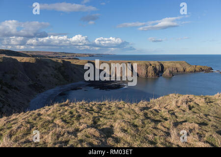 View North from the cliffs at Dunnottar castle, Stonehaven, Aberdeenshire, UK. - Stock Image