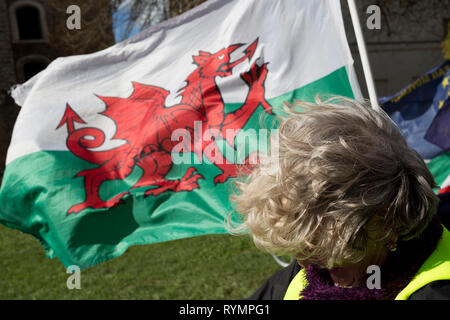 On the day that MPs in Parliament vote on a possible delay on Article 50 on EU Brexit negotiations by Prime Minister Theresa May, the Welsh Dragon flies over College Green during a protest outside the House of Commons, on 14th March 2019, in Westminster, London, England. - Stock Image