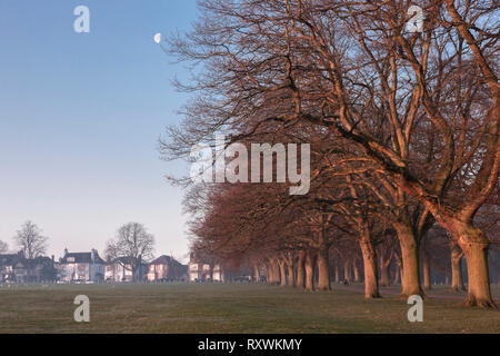 Abington Park, Northampton just after sunrise in the winter. - Stock Image