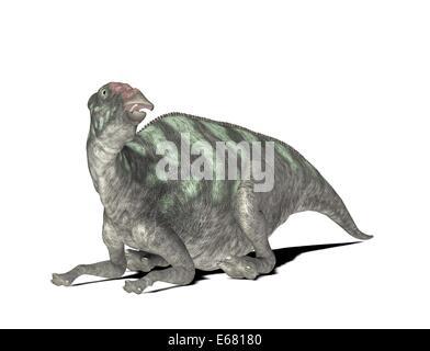dinosaur Maiasaura - Stock Image