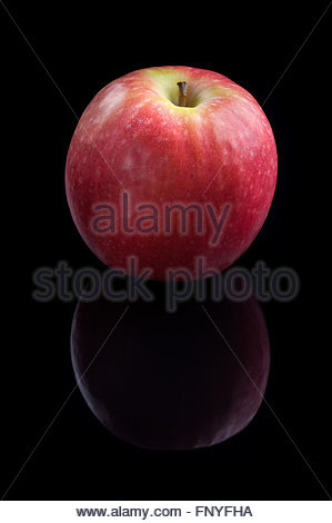 Pink Lady apple - Stock Image