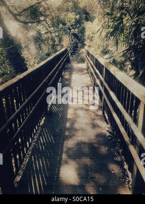 Small wooden bridge at a hiking path through forest, with muted, natural colors and vintage paper texture overlay. - Stock Image