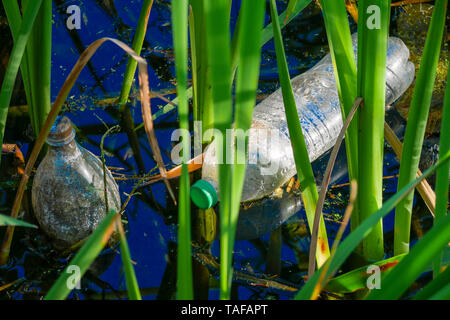 Botellas descartables de plástico, uno de los mayores problemas que hay en el planeta que terminan como basura y contaminan el medio ambiente - Stock Image
