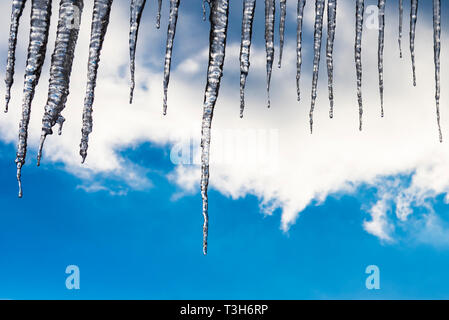 Melting icicles on a sunny winter's day in Austria - Stock Image