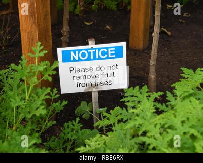 Concept Adam and Eve garden of Eden please do not pick fruit notice. - Stock Image