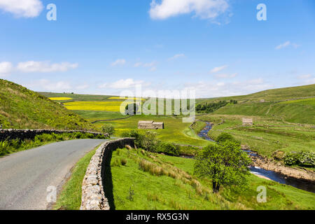 Quiet country road to Birkdale Common by River Swale in Upper Swaledale, Yorkshire Dales National Park, North Yorkshire, England, UK, Britain - Stock Image