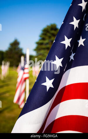 American flags of the United States. The red, white, and blue American flag is also called Old Glory and the Stars - Stock Image