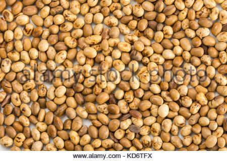 Closeup macro flat lay above soya beans background. - Stock Image