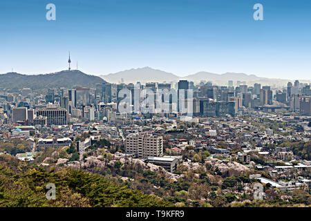 High up view of Buildings and tower in Seoul, South Korea - Stock Image