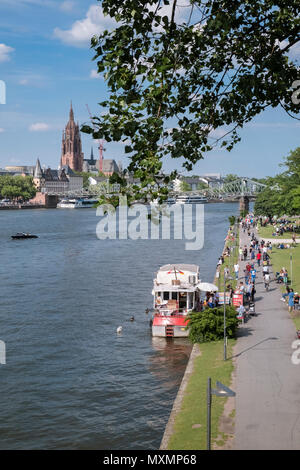 River Main flowing through the centre of Frankfurt am Main, Hesse, Germany, with Frankfurt cathedral in the background. - Stock Image