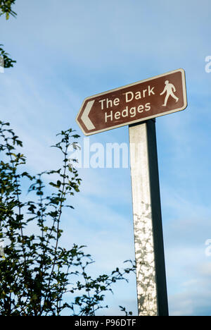 Sign for the Dark Hedges in County Antrim, Northern Ireland - Stock Image