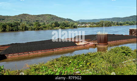 Loaded coal barges awaiting transportation, Ohio River, Ohio state on the opposite shore, near Parkersburg, Wood County, West Virginia, United States. - Stock Image