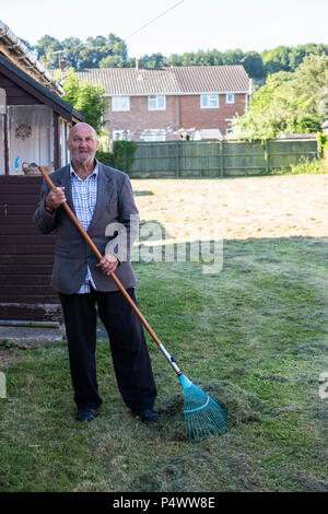 Old man raking up cut grass after the lawn has been mowed. - Stock Image