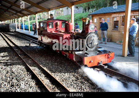Passengers watch as the driver uses his injectors to reverse his 15-Inch narrow gauge steam locomotive 'Mark - Stock Image