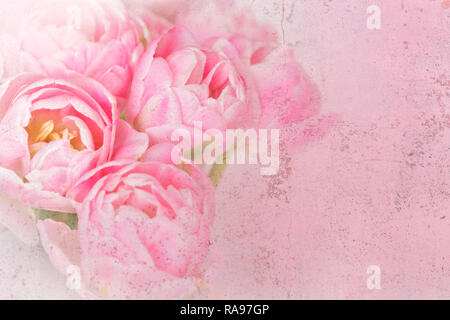 Tulip flowers in shades of pink, distressed grunge effect, nostalgic and romantic background template for florists or greeting cards - Stock Image