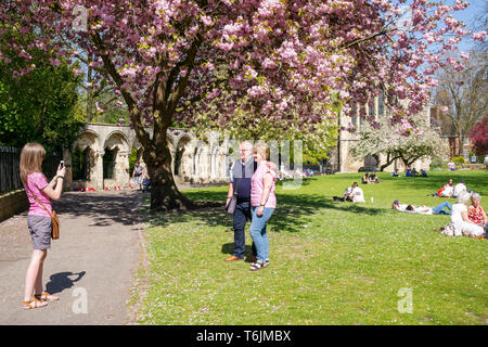 Capturing the moment on a warm Spring day, Dean's Park, York, UK - Stock Image
