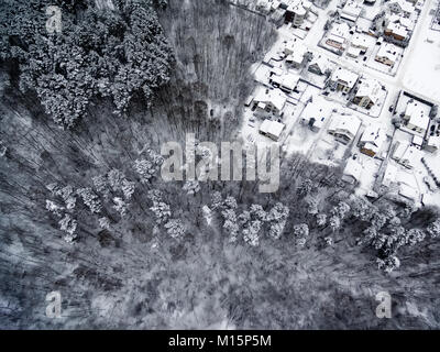 Aerial top view of forest and detached houses in winter - Stock Image