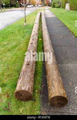A pair of new wooden utility poles lying on the ground, Vancouver, BC, Canada - Stock Image