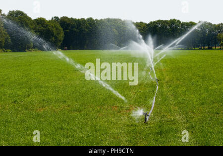 Irrigating grassland in a period of drought in the summer in the Netherlands - Stock Image