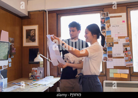 Creative designers with dog reviewing photograph proofs in office - Stock Image