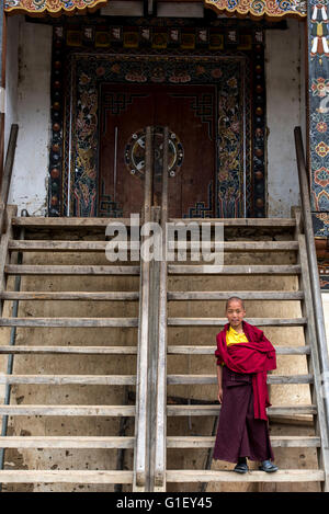 Young Buddhist monk at Gangtey monastery Bhutan - Stock Image