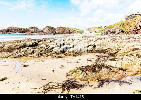 Devon rugged coastline, Rugged coast Devon, rocks, Devon coast, Devon coastline, rugged, rocky, Hope Cove Devon, Devon, coast, coastline, UK, England - Stock Image