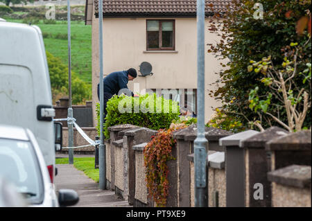 Macroom, West Cork, Ireland. 8th Oct, 2018. A Garda searches a bush opposite the home of the murder victim who has been named locally as 44 year old Timmy Foley. Credit: Andy Gibson/Alamy Live News. - Stock Image