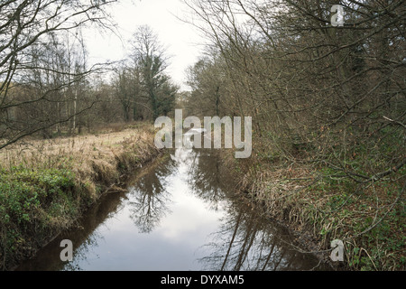 River Dearne as seen from the Bridge Royd Wood area of the Yorkshire Sculpture Park. - Stock Image