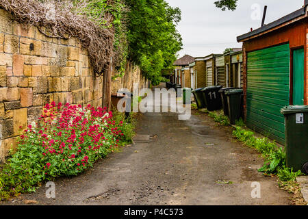 Row of garages with dustbins behind houses in Wylam, north east England, with valerian flowers in the wall. 2018. - Stock Image