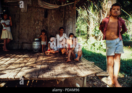 Brazilian Amazon riverine family - ribeirinho, those who live near the rivers and have artisanal fishing as the main survival activity and also cultivate small clearings for own consumption and can practice extractive activities - Amazonas State, Brazil. - Stock Image