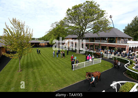 A general view of the parade ring - Stock Image
