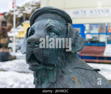Statue of Bamse, the Saint Bernard that was a heroic mascot of the Free Norwegian Forces during World War II.  Honningsvåg, - Stock Image