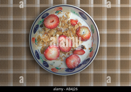 A Bowl of Cereal with Fruit - Stock Image