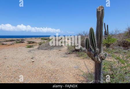 The Coast at Shete Boka National Park, Curacao - Stock Image